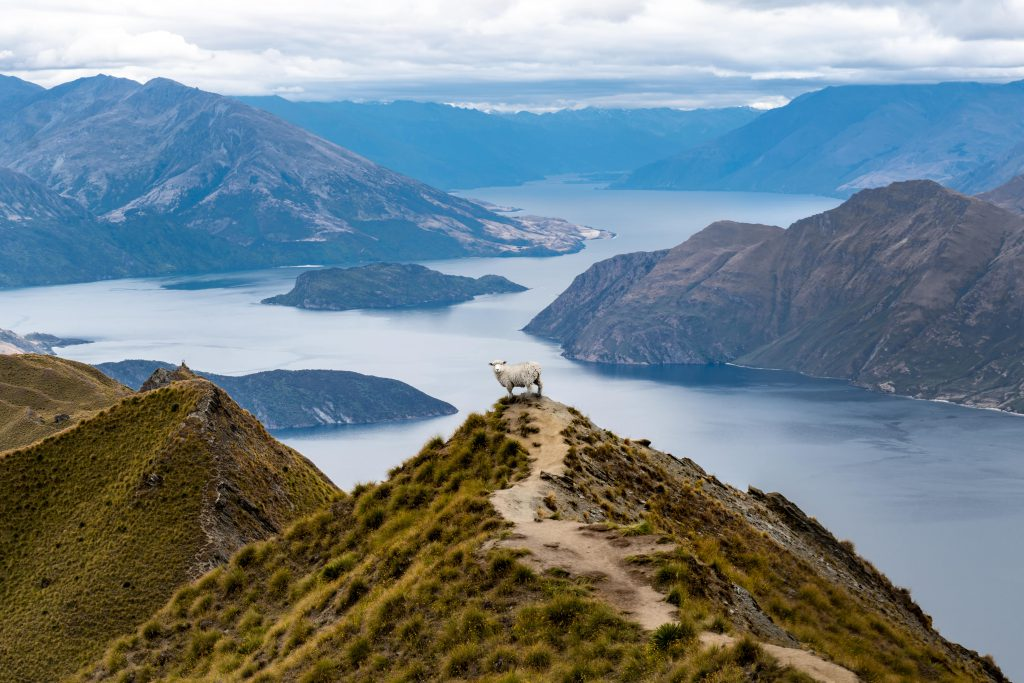queenstown holiday cottages